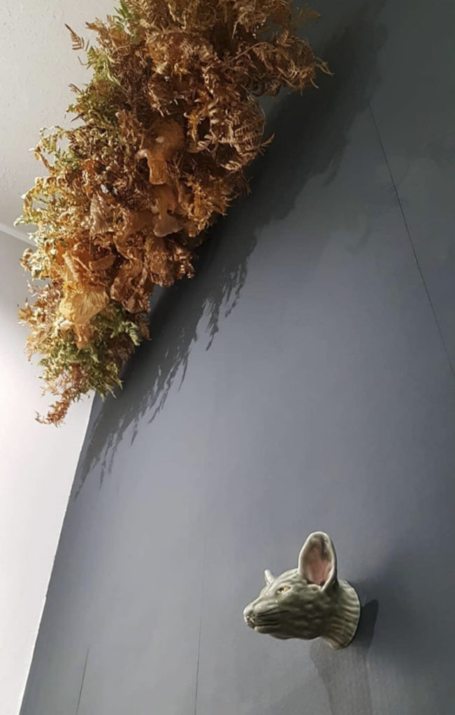kukkakauppa opuntia tampere kuivakukkapilvi kuivakukkapilvet kuivakukka kuivakukat